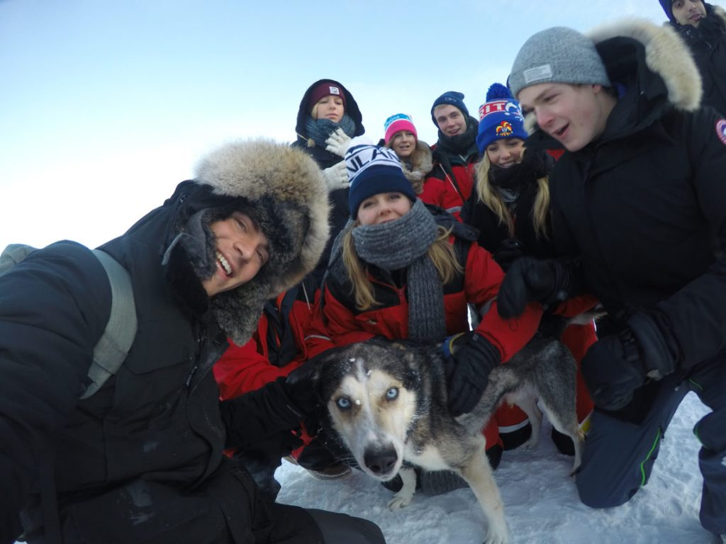Group and Dog Lapland Finland