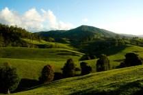 Landscape-16