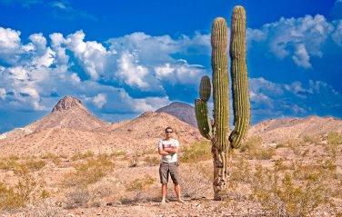 The Sonoran Desert, Arizona, USA.
