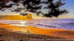 Avalon Beach