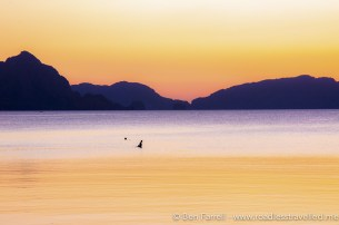 A fisherman brings in his nets at sunset in El Nido, Philippines