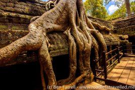 Angkor-24
