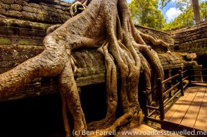 Trees overcome the 'Tomb Raider' temple in ancient Angkor, Cambodia.