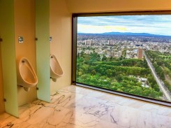 Urinal with a view