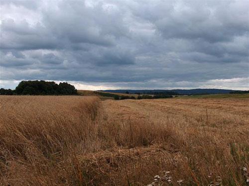 Pommersche Landschaft