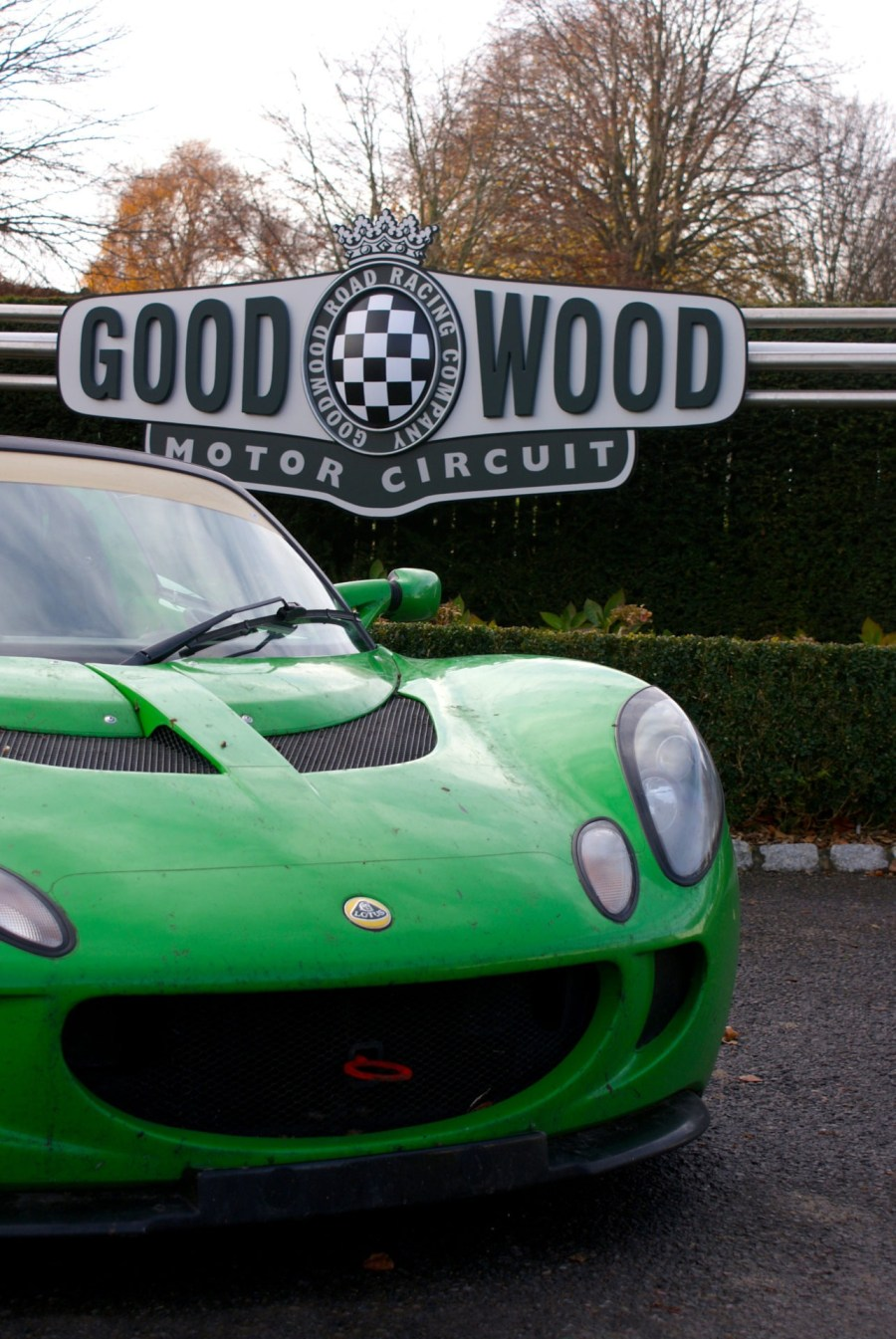 roadrugcars road rug cars lotus elise goodwood