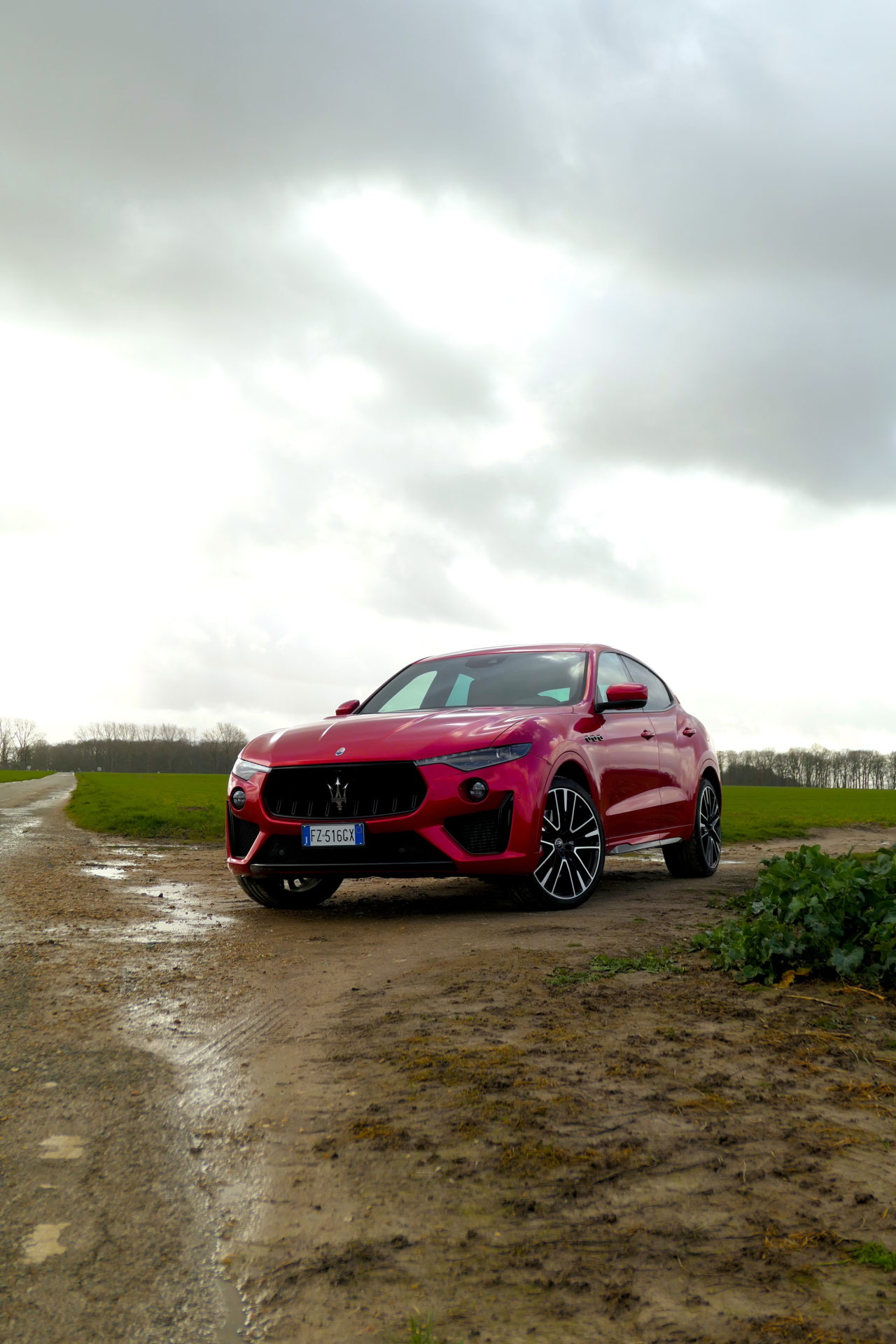 roadrugcars road rug cars maserati levante trofeo terrific face