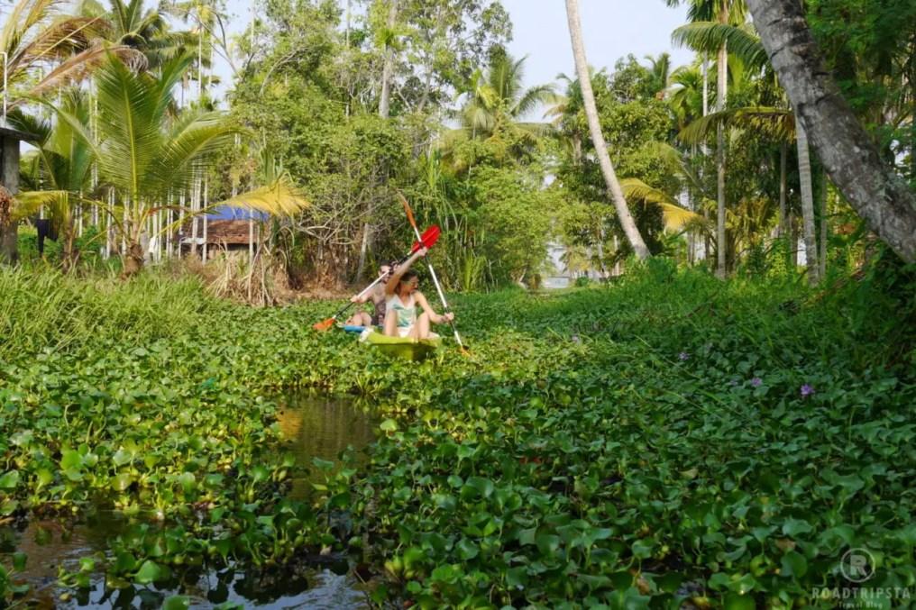 Backwaters Kajak Tour