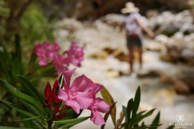 Nerja Andalusien Rio Chillar