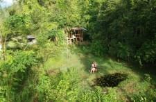 Blick aufs Bolita Rainforest Hostel per Drohne