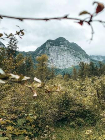 Blick auf die Berge vom Bluntautal aus