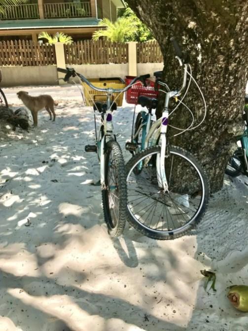 Fahrräder an der Anse Severe