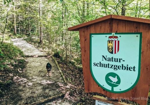 Nussensee Oberösterreich