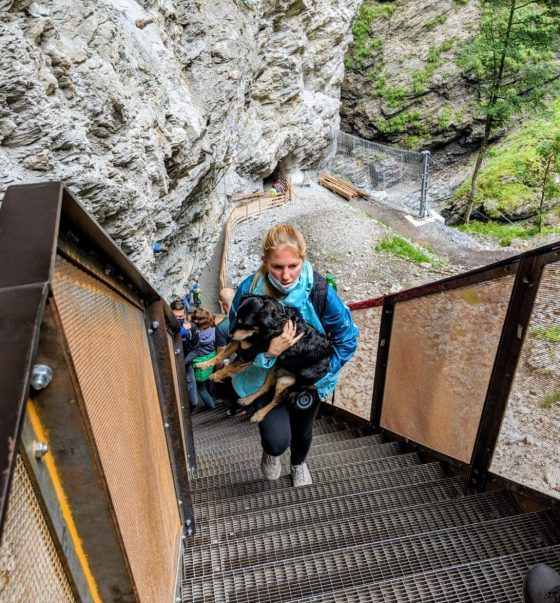 Liechtensteinklamm - Hunde müssen getragen werden