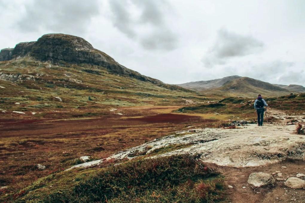 Norwegen Preise - Was kostet ein Urlaub in Norwegen?