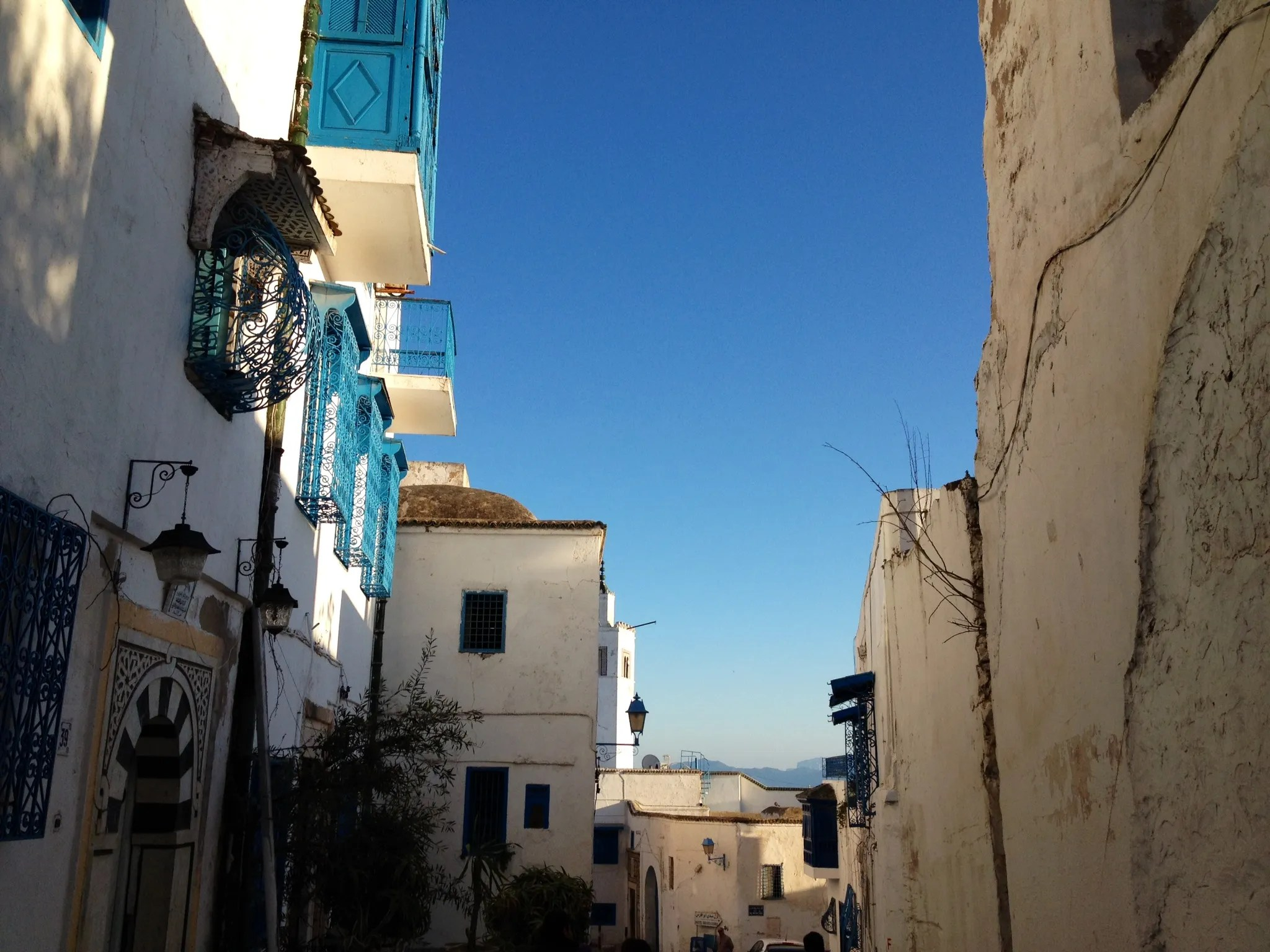 19 Things To Know Before You Go To Tunis