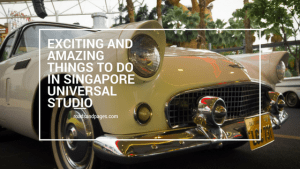 Exciting and Amazing Things to do in Singapore Universal Studio