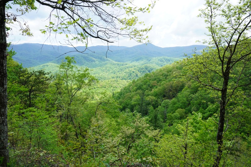 View of the Great Smoky Mountains from the Roaring Fork Motor Nature Trail