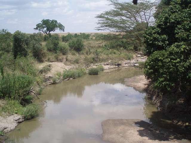 talek-river-at-fig-tree-camp-masai-mara-kenya.jpg