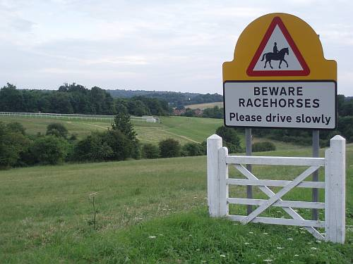 beware-racehorses-and-derby-start-line-epsom-surrey-england-by-roadsofstone