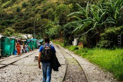 Peru, trail from Santa Teresa to Agua Calientes