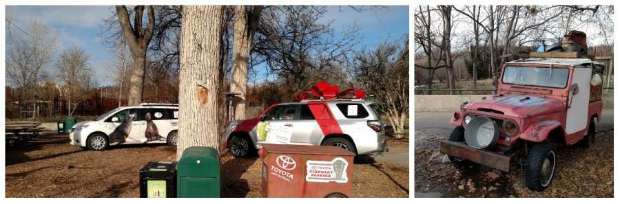 Toyotas at the Denver Zoo.