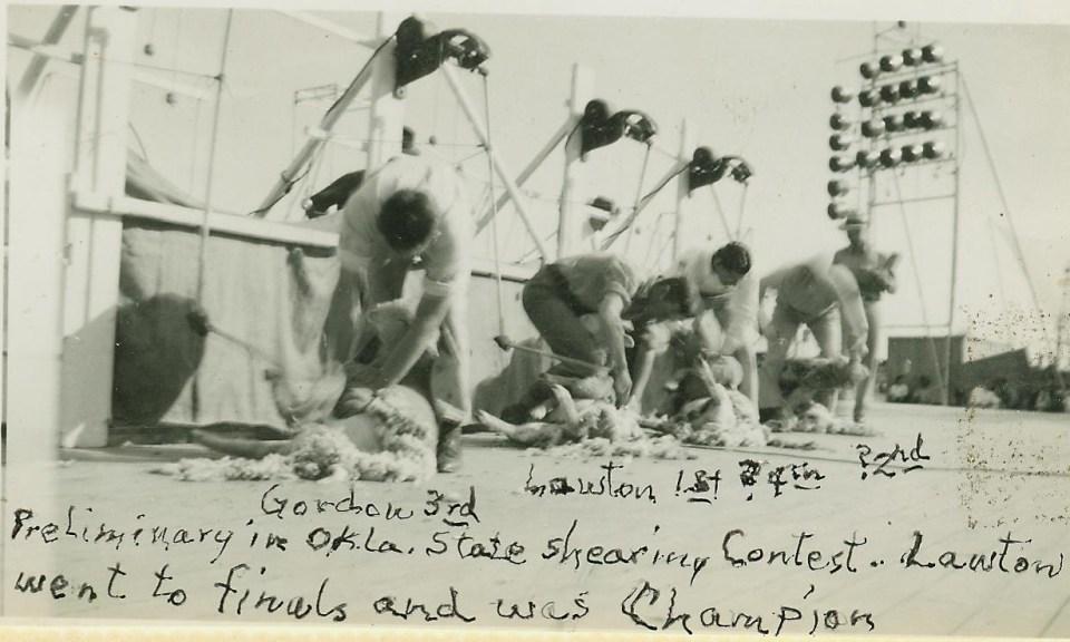 Sheep Shearing 1944