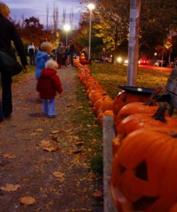 pumpkins in a park