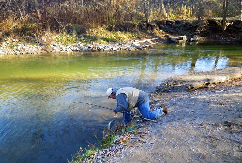 Peter Wasag fly fishing an Ontario stream