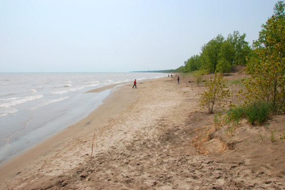 beach at Long Point Provincial Park