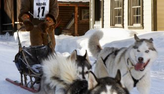 Canada Post by dog sled