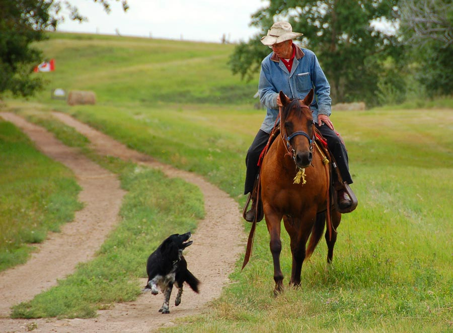 cowboy and his dog