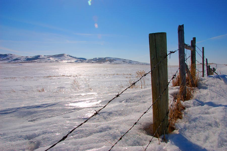 fences-near-Veteran