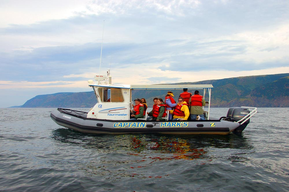 Captain Marks whale watching cabot trail