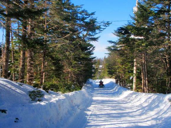 T'railway-Provincial-Park-Newfoundland_down-the-trail