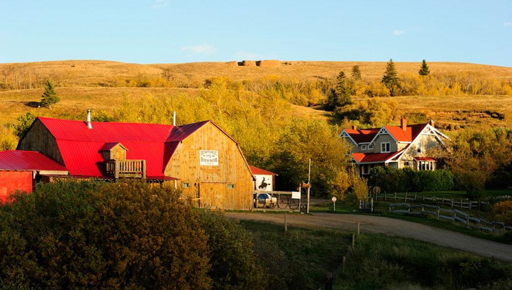 reesor-ranch-barns-and-house