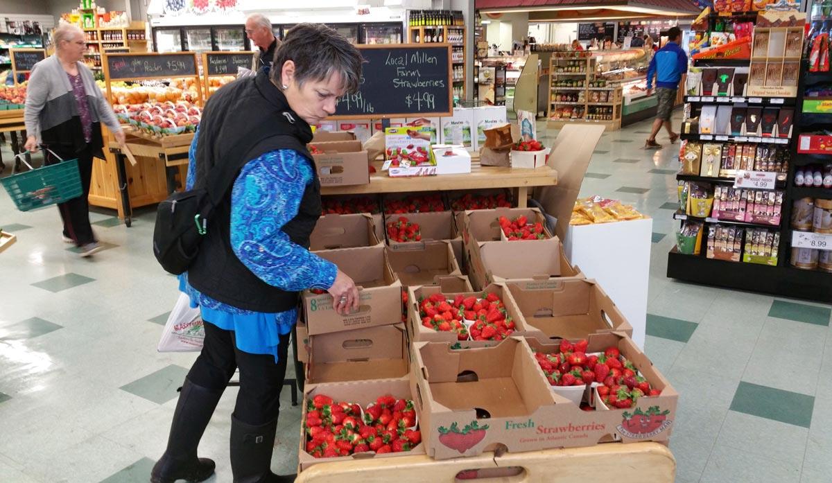 shopping at Masstown Market, Nova Scotia