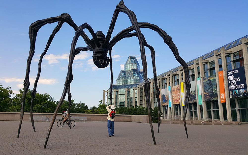 Maman Ottawa spider