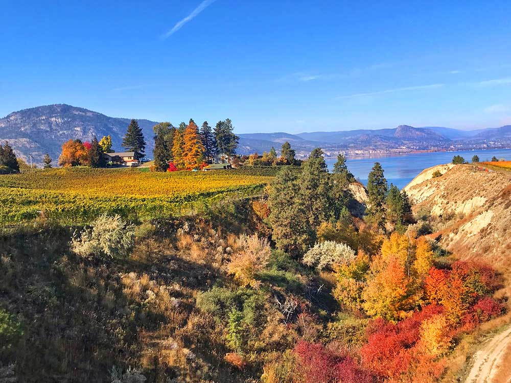 Okanagan Valley Visitors can enjoy fall colours from a bike seat