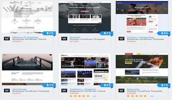 Template Monster WordPress Theme