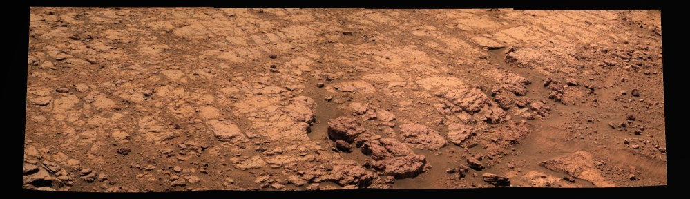 Oppy - alone no more...
