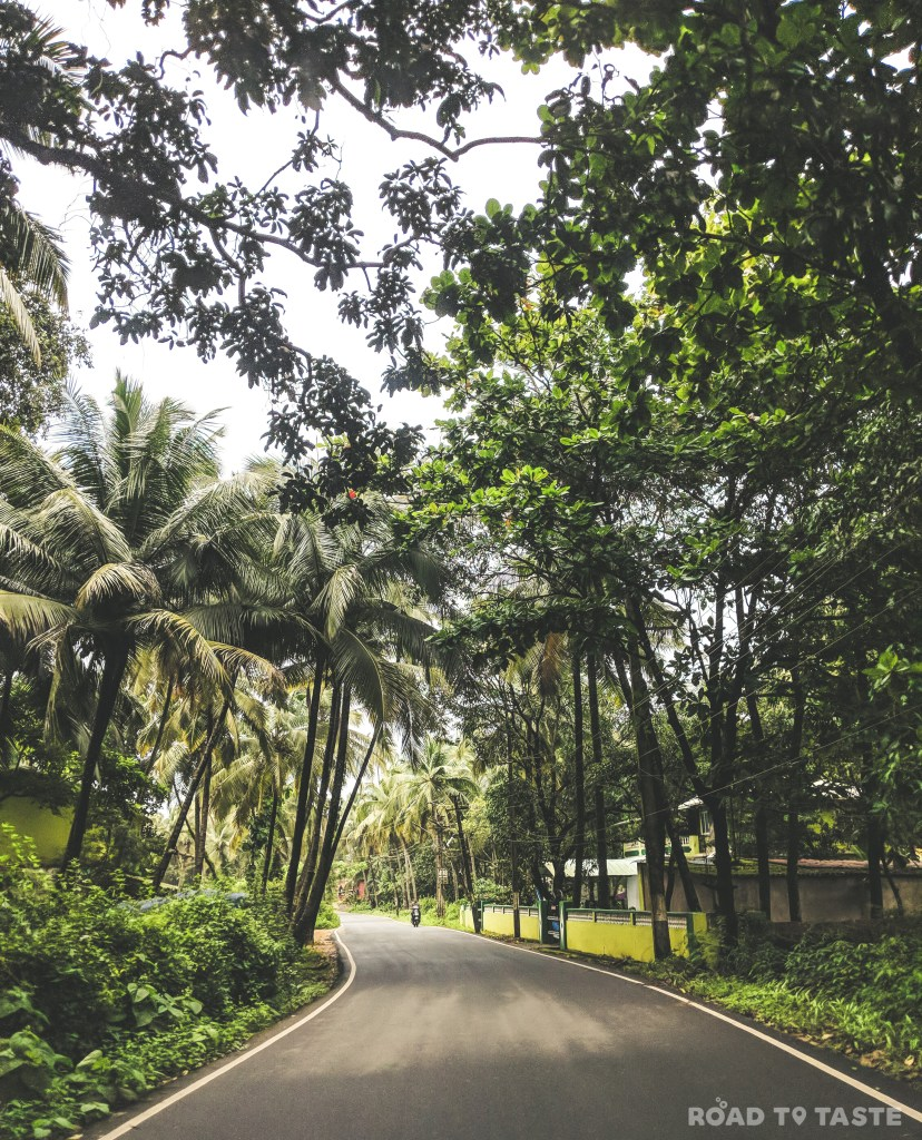South Goa in Monsoons