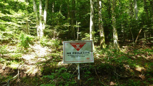 """Forêt croate avec de nombreux panneaux """"Terrain miné"""""""
