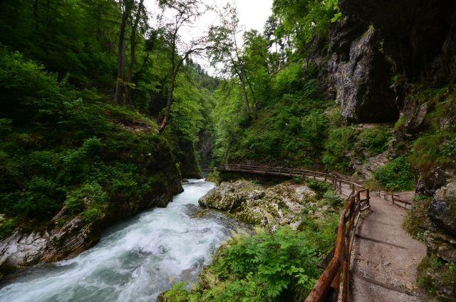 Gorge de Vintgar - Slovénie