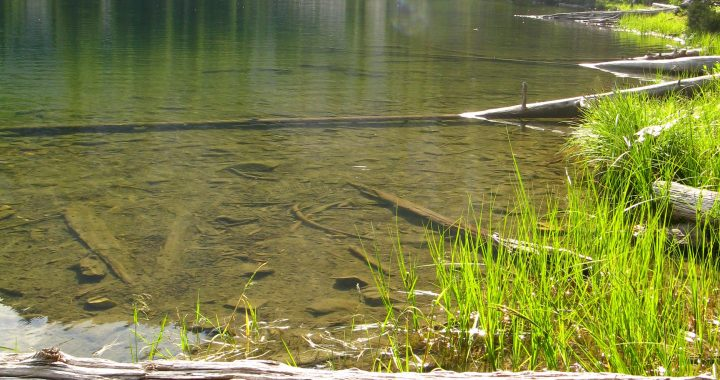 Wallace Lake A-Frame – Wallace, Idaho