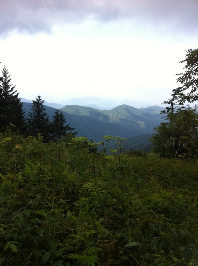 Smoky Mountains National Park-Planning a Successful Multi-Generational Vacation Family Reunion