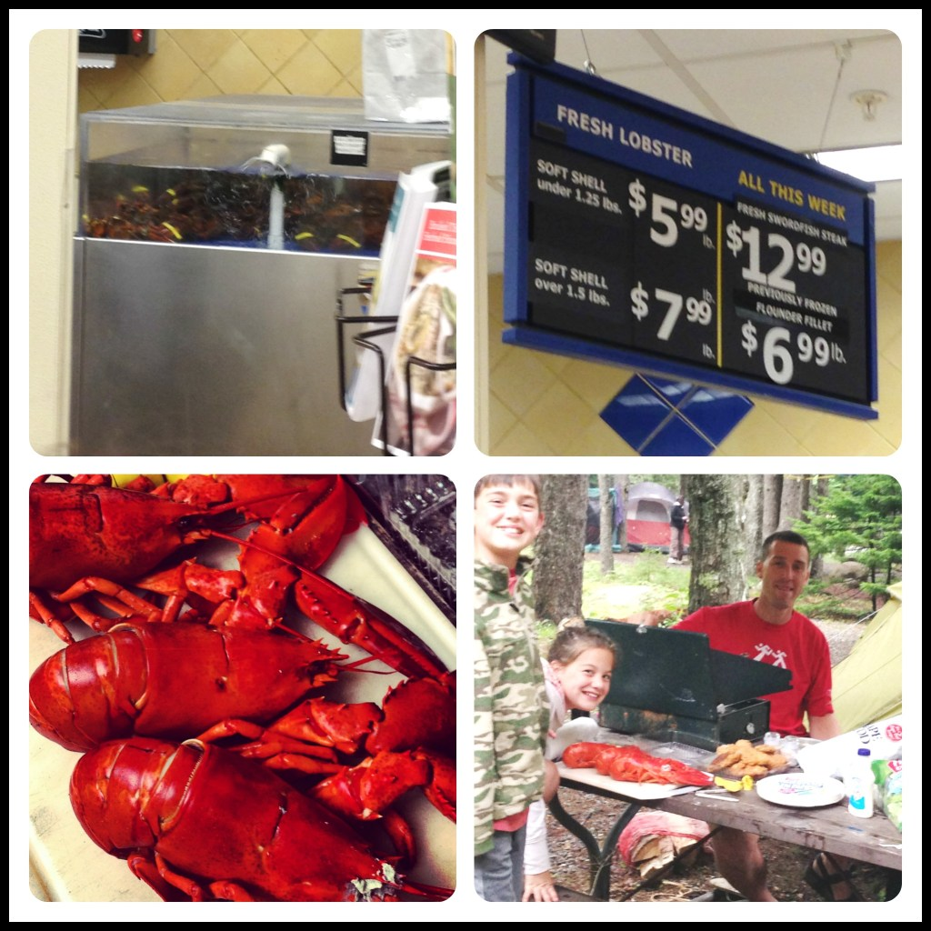 Lobster Feast While Camping? Heck yeah! Acadia National Park