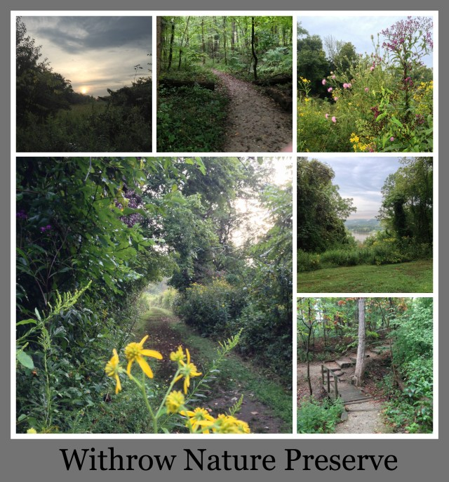 30 Days of Trails in Cincinnati: Withrow Nature Preserve