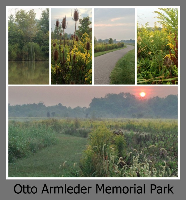 30 Days of Trails in Cincinnati: Otto Armleder