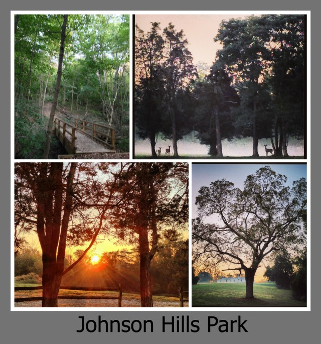 30 Days of Trails in Cincinnati: Johnson Hiils